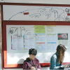 « Graffiti su autobus e alle fermate. Danni per 100 mila euro all'anno»