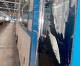 Vandali sui treni: 10mila euro di danni