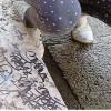 Si prova con l'abrasione: graffiti attenuati